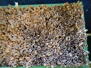 Insektenhotel #8 - Insektenhotel, Insekten, Wildbienen, Bienenhotel, Wespen, Bruthilfe, Höhlung, Nisthilfe, Überwinterungshilfe, Insektenhaus, Insektenschutz, Nistkästen, Vogelhaus, Naturmaterial