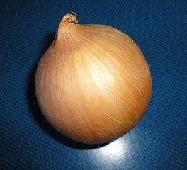 Zwiebel - Zwiebel, Gemüse, Speisezwiebel, Lilienähnliche, Spargelartige, Zwiebellauch, Bolle, Küchenzwiebel, Gartenzwiebel, Sommerzwiebel, Hauszwiebel, Gemeine Zwiebel
