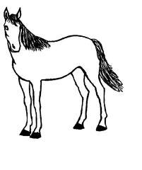 Pferd, stehend - Pferd, Ausmalbild