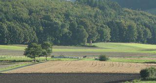 Landschaft   #4 - Landschaft, Herbst, Kornfelder, Ernte, Meditation