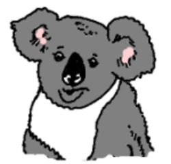 Koala gemalt (bunt) - Koalabär, Koala, Australien, Beuteltier, Illustration, Anlaut K, Anlaut B