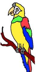 Papagei gemalt (bunt) - Papagei, Vogel, bunt, Illustration, Anlaut P, Wörter mit ei
