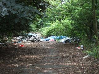 wilde Müllkippe - Umwelt, illegale Müllentsorgung, Müll, Umweltverschmutzung