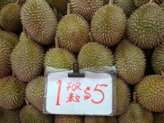 Durian_Stinkfrucht - Frucht, Asien, Durian, Stinkfrucht, Käsefrucht, Stacheln, Zibetbaum, Heilpflanze