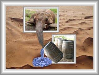 Aus dem Rahmen ... (7) - Collage, Perspektive, Elefant, Wasser, Effektbild