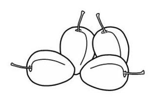 Pflaumen - Pflaume, Obst, Frucht, Zeichnung, Illustration, vier, Zwetschke, Zwetschge, Anlaut pf, Wörter mit pf, Wörter mit au