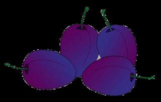 Pflaumen - Pflaumen, Obst, Frucht, Früchte, vier, violett, Zwetschge, Zwetschke