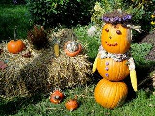 Kürbisdekoration #1 - Kürbis, Fest, Herbst, Dekoration, bunt