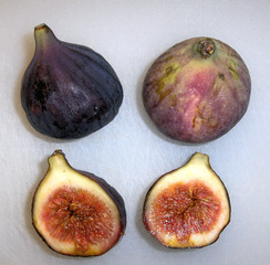 Feigen - Feige, Feigen, Frucht, Früchte, Obst, Steinfrüchte, Steinfrucht, blau, rot, weich, reif, süß, zwei, drei, Asien, Bibel