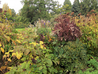 Herbststimmung #3 - Herbst, Herbststimmung, Herbstfarben, Farbe, rot, orange, braun, Natur, Garten, Park, Berggarten